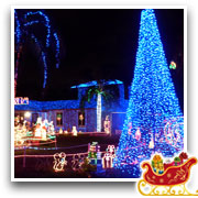 The Doyle Family's Wonderful World of Lights - Image02