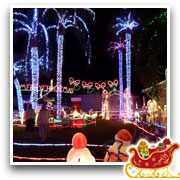 The Doyle Family's Wonderful World of Lights - Image04