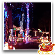 The Doyle Family's Wonderful World of Lights - Image10