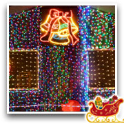 The Doyle Family's Wonderful World of Lights - Image12